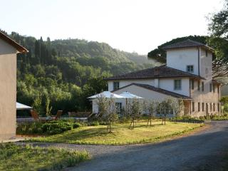 Villa Valle - Forcoli vacation rentals