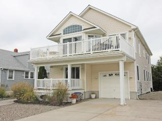 Perfect 5 bedroom House in Avalon - Avalon vacation rentals