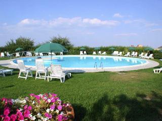 2-bedroom apartment in farmhouse Vesta close Siena - Siena vacation rentals
