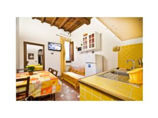 Max Guelfa 2 Bedroom Apartment with Courtyard - Florence vacation rentals