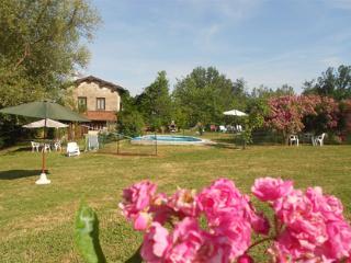 4 bedroom Farmhouse Barn with Internet Access in Gallicano - Gallicano vacation rentals
