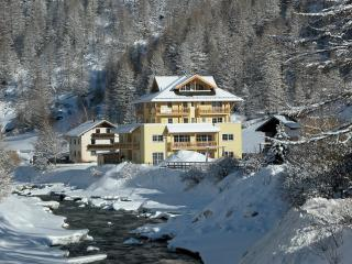 Ski Apartment & summer holiday. Walking, cycling - Zwieselstein vacation rentals