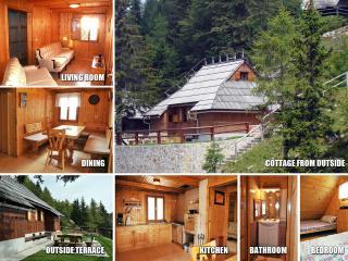 Comfortable 2 bedroom Cottage in Kamnik - Kamnik vacation rentals