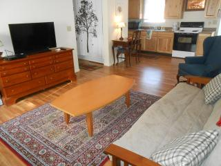 Wonderful House with Deck and Internet Access - Yellow Springs vacation rentals