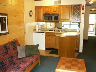 Canyon Creek Condo #232 - 1 Bed Condo near Casino - Ruidoso vacation rentals