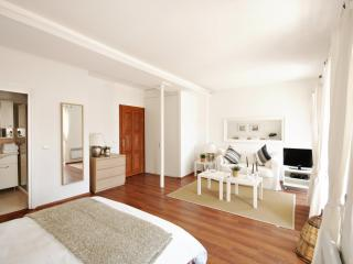 Comfortable Apartment with Internet Access and A/C - Istanbul vacation rentals
