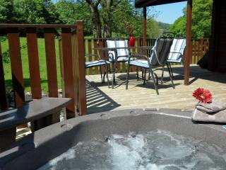 Tarn Hows Lodge - 2 bedrooms and Hot Tub - Windermere vacation rentals