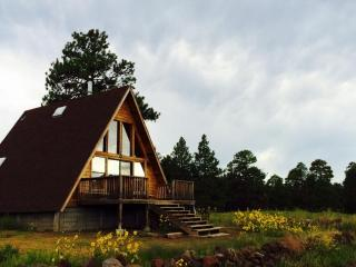 A-Frame Mountain View Cabin in a National Forest - Flagstaff vacation rentals