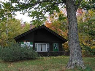 Emmon's Mittersill Chalet - Franconia vacation rentals