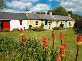 Y Cwm - Haverfordwest vacation rentals