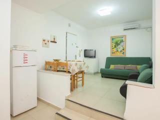 Raanana Center 1 bedroom #23 - Ra'anana vacation rentals