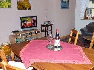 Perfect Condo with Internet Access and Satellite Or Cable TV - Steinach vacation rentals