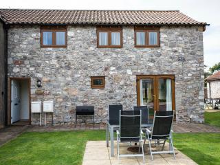 Cherry Cottage - Weston super Mare vacation rentals