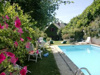Nice House with Internet Access and Mountain Views - Saint-Nectaire vacation rentals