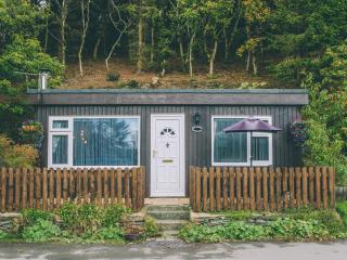 2 bedroom Chalet with Television in Aberdovey / Aberdyfi - Aberdovey / Aberdyfi vacation rentals