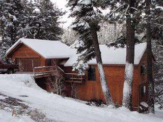 Serventi's Playground - Bonus Room and Hot Tub! - Truckee vacation rentals