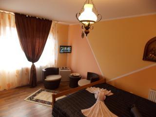 Spacious 8 bedroom Villa in Prahova County - Prahova County vacation rentals