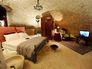Historical Apartment - Palazzo Valenti Gonzaga - Mantova vacation rentals