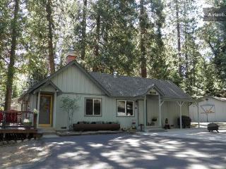 Bear Crossing Lodge - Twain Harte vacation rentals
