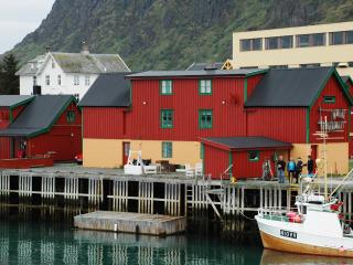 4 bedroom Condo with Internet Access in Lofoten Islands - Lofoten Islands vacation rentals