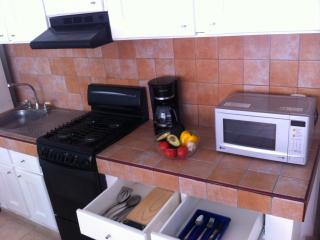 At Old Town & Beach -just 1/2 block-  1 BR apt. ! - Puerto Vallarta vacation rentals