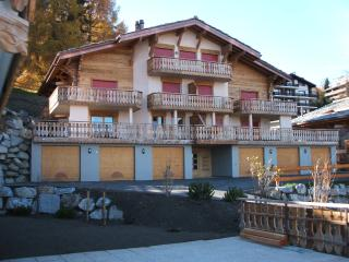 Apartment to rent in Haute Nendaz, Switzerland - Nendaz vacation rentals
