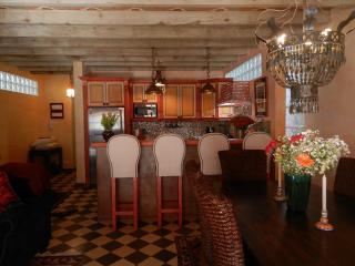Casa Caramba/El Nido Gorgeous Artsy Apartment - San Miguel de Allende vacation rentals