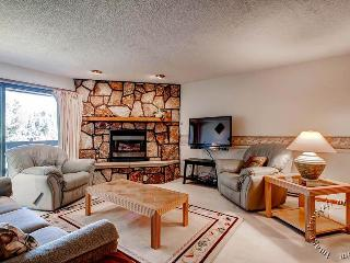 The Atrium 206 by Ski Country Resorts - Breckenridge vacation rentals