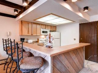 Longbranch 215 by Ski Country Resorts - Breckenridge vacation rentals
