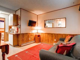 Park Meadows Lodge 1A by Ski Country Resorts - Breckenridge vacation rentals