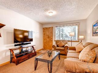 Park Meadows Lodge 1D by Ski Country Resorts - Breckenridge vacation rentals