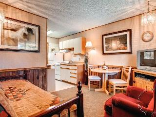 Park Meadows Lodge 6C  by Ski Country Resorts - Breckenridge vacation rentals