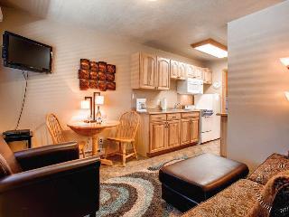 Park Meadows Lodge 7C by Ski Country Resorts - Breckenridge vacation rentals