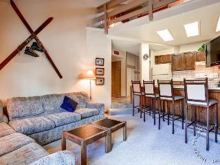 Powder Ridge Condos 201 by Ski Country Resorts - Breckenridge vacation rentals