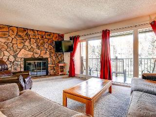 Sawmill Creek Condos 215 by Ski Country Resorts - Breckenridge vacation rentals