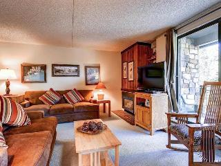 Trails End Condos 203 by Ski Country Resorts - Breckenridge vacation rentals