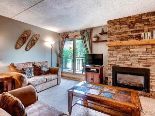 Trails End Condos 313 by Ski Country Resorts - Breckenridge vacation rentals