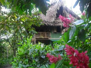 Rio Dulce Guest House - Guatemala vacation rentals