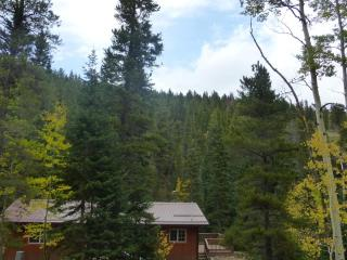 Moon Creek Cabin - Wooded Streamside Cabin - Nederland vacation rentals