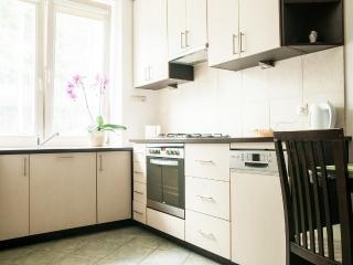 Comfort & Style in center of Warsaw - Warsaw vacation rentals
