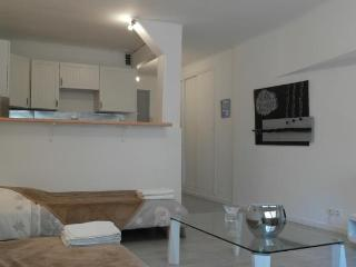French Riviera Holiday Rental, Studio Versailles, Cannes - Cannes vacation rentals