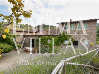 Il Cavato 9 - San Polo in Chianti vacation rentals