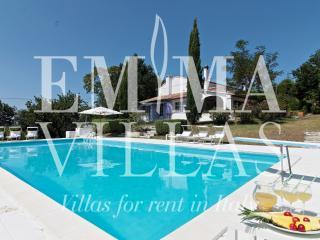 Il Glicine 8 - Rimini vacation rentals