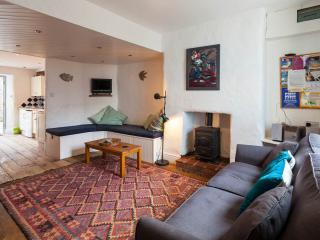 3 bedroom Cottage with Internet Access in Tenby - Tenby vacation rentals