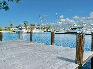 Boater's Dream House w/ hot tub & direct access to the Gulf of Mexico - Marco Island vacation rentals