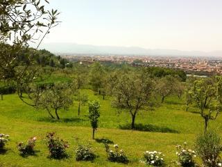CR100Prato - Holiday Home Filettole - Prato vacation rentals