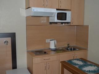 Nice Condo with Internet Access and Satellite Or Cable TV - Samara vacation rentals