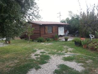 1 bedroom Cottage with Internet Access in Albano Laziale - Albano Laziale vacation rentals