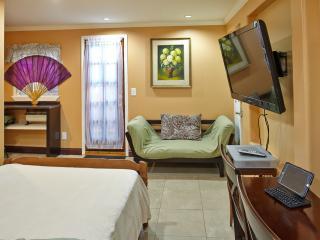 Almaden studio, downtown San Jose - San Jose vacation rentals