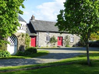 Welsh cottage for 4, wifi, games room, BBQ, 2 dogs - Lampeter vacation rentals